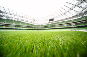 green-cut grass in large stadium at summer day, large soccer fie